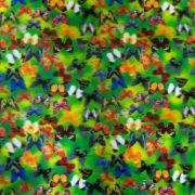 3D-Lenticular-Sheets-3D-Butterflies-Floating-0